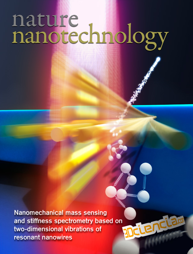 Nanomechanical mass sensing and stiffness spectrometry based on two-dimensional vibrations of resonant nanowires.