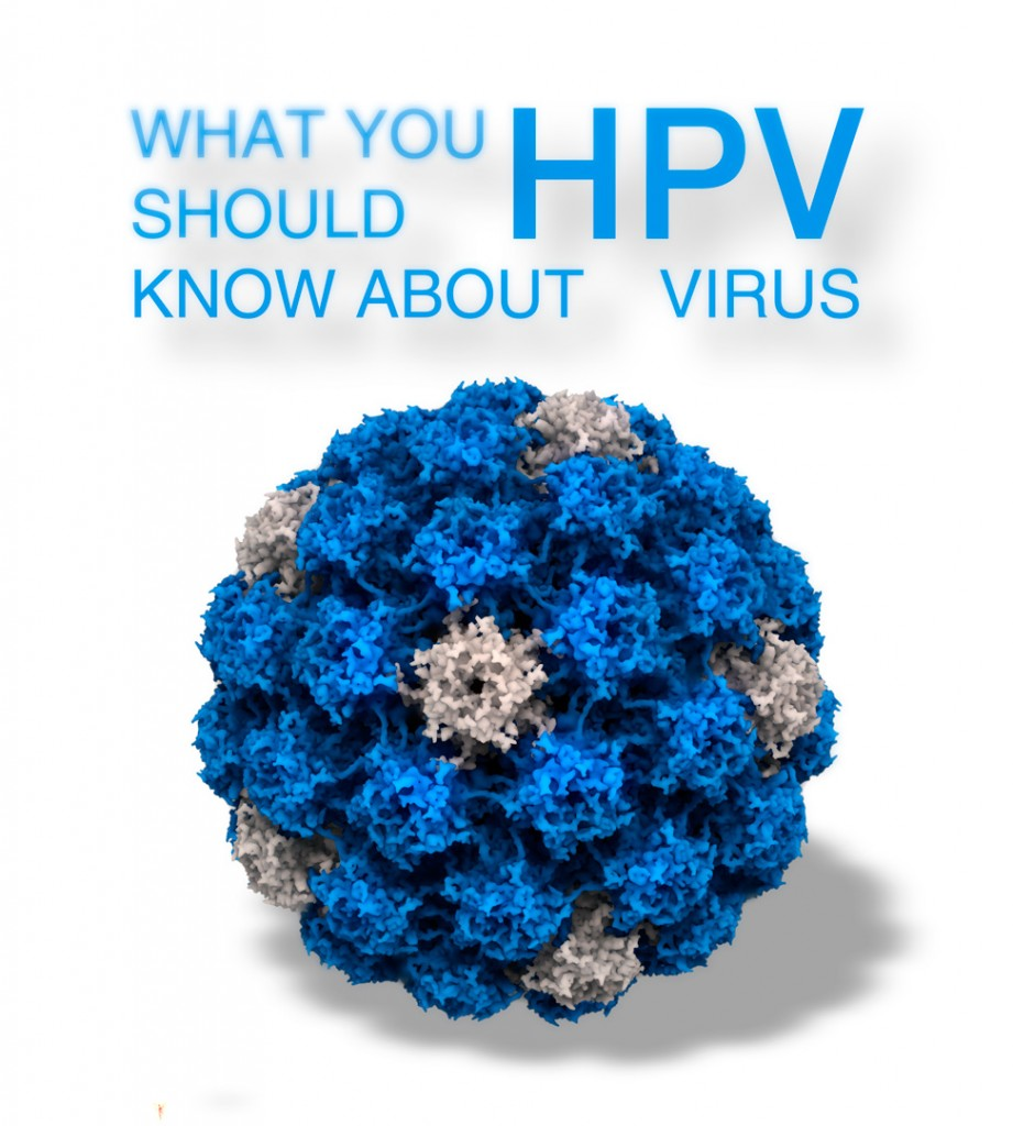 everything you need to know about human papillomavirus essay Communities human papillomavirus (hpv)  important hpv q and a human papillomavirus (hpv) here are 16 facts you need to know to protect yourself from.
