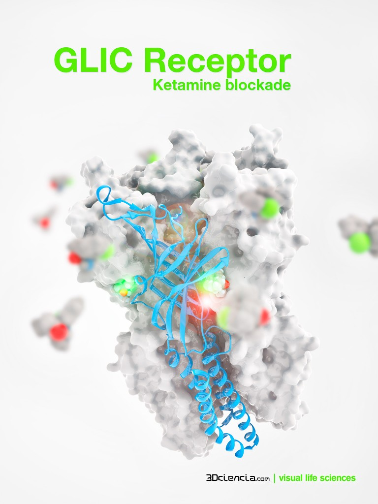 ketamine blockade of Pentameric ligand-gated ion channel