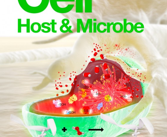 cell host microbe proposal h2o2 bacterial proteome cover 3dciencia web